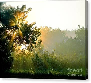 Rise And Shine Canvas Print by Sue Stefanowicz