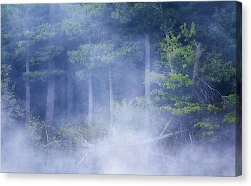 Rising Mist Canvas Print by Barbara Smith