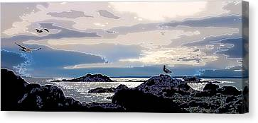 Rising Tide Canvas Print by Bill Caldwell -        ABeautifulSky Photography