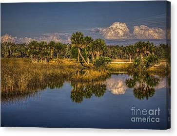 Rising Tide Canvas Print by Marvin Spates
