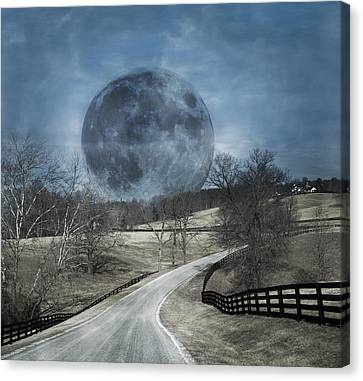 Rising To The Moon Canvas Print by Betsy C Knapp