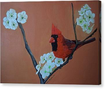 Rita's Redbird For Kevin Canvas Print by Barbara Samples