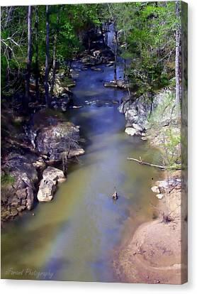 River At Noccalula Falls Canvas Print by Debra Forand