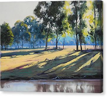 River Bank Shadows Tumut Canvas Print by Graham Gercken