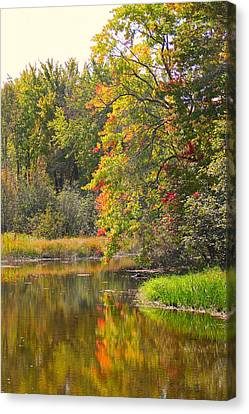 River In Fall Canvas Print by Rhonda Humphreys