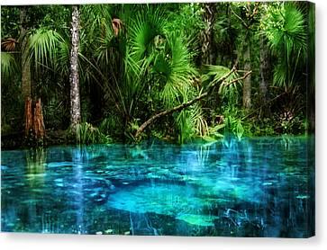 River Of Blue Chassahowitzka Nwr Canvas Print by Chris  Kusik