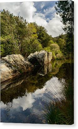 River Reflections II Canvas Print by Marco Oliveira