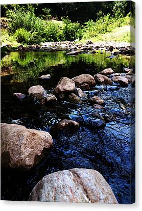 Riversong Canvas Print by Lucy D