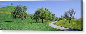 Road Cantone Zug Switzerland Canvas Print by Panoramic Images