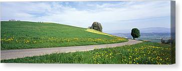 Road Fields Aargau Switzerland Canvas Print by Panoramic Images