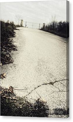 Road Less Traveled Canvas Print by Margie Hurwich