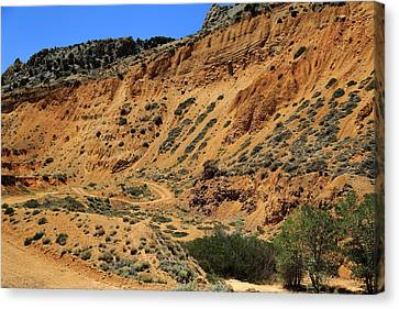 Road Less Traveled Canvas Print by Scott Hill