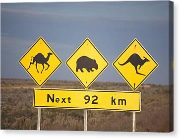 Road Sign Nullarbor Plain Australia Canvas Print by Mark Newman