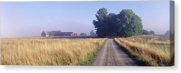 Road Sweden Canvas Print by Panoramic Images