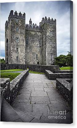 Road To Castle Canvas Print by Svetlana Sewell
