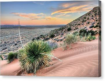 Road To Mexico Canvas Print by JC Findley