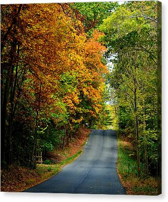 Road To Riches Canvas Print by Carlee Ojeda