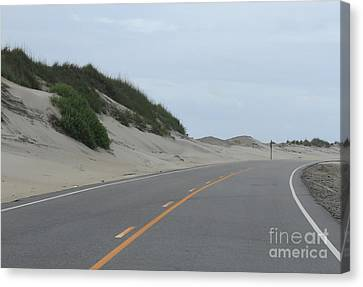 Roadside Dunes Canvas Print by Cathy Lindsey