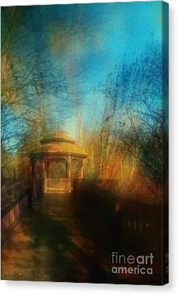 Robindro Canvas Print by Floyd Menezes