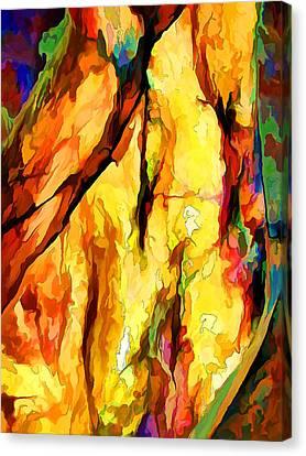Rock Art 25 Canvas Print by Bill Caldwell -        ABeautifulSky Photography