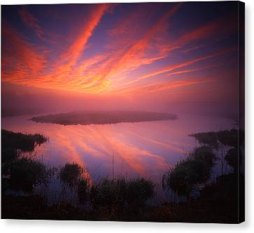 Rockets Red Glare Canvas Print by Ray Mathis
