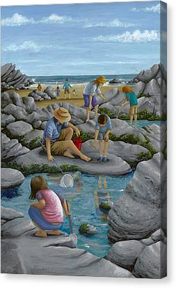 Rockpooling Canvas Print by Peter Adderley