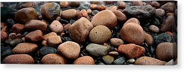 Rocks Acadia National Park Me Usa Canvas Print by Panoramic Images