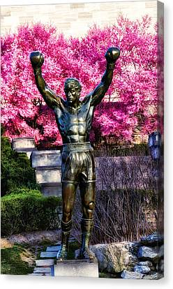 Rocky Among The Cherry Blossoms Canvas Print by Bill Cannon