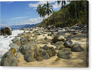Rocky Coast Canvas Print by Aged Pixel