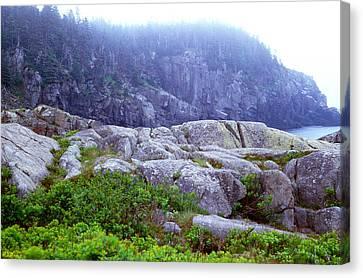 Rocky Maine Coast Canvas Print by Amanda Kiplinger