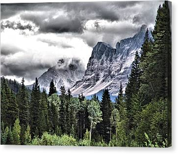 Rocky Mountain Beauty Canvas Print by Janet Ashworth