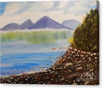 Rocky River Tasmania  Canvas Print by Pamela  Meredith
