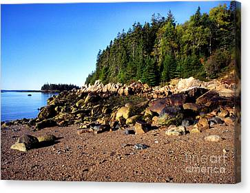 Rocky Shoreline Deer Isle Maine Canvas Print by Thomas R Fletcher