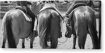 Rodeo Bums Canvas Print by Michelle Wrighton