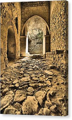Roman Road Canvas Print by David Letts