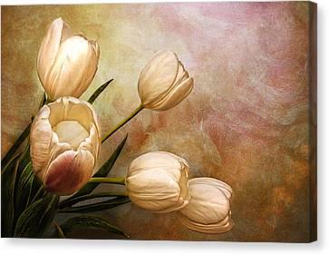 Romantic Spring Canvas Print by Claudia Moeckel