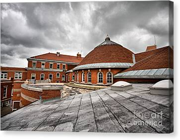 Roof Top 2 Canvas Print by Mark Baker