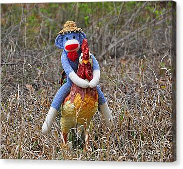 Rooster Rider Canvas Print by Al Powell Photography USA