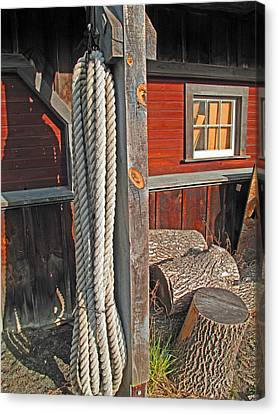 Ropes And Woods Canvas Print by Barbara McDevitt