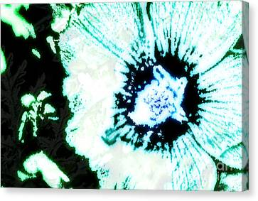 Rosa Sinensis Abstract Canvas Print by Floyd Menezes