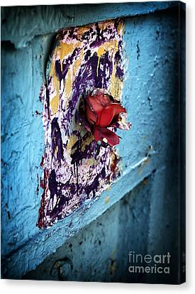 Rose For The Dead Canvas Print by John Rizzuto