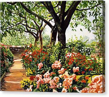 Rose Garden Impressions Canvas Print by David Lloyd Glover