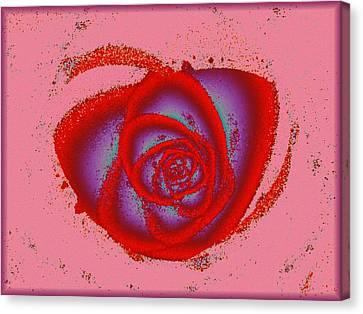 Rose Heart Canvas Print by Anastasiya Malakhova