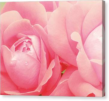 Rose Photography Pink Roses Pink Flower Photography Baby Girl Nursery Art Soft Girly Pink Wall Art Canvas Print by Amy Tyler
