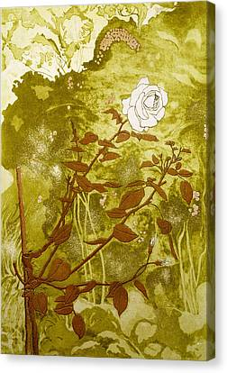 Rose Canvas Print by Valerie Daniel