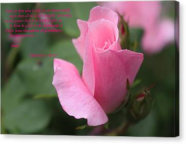 Rose With Scripture Canvas Print by Carolyn Ricks
