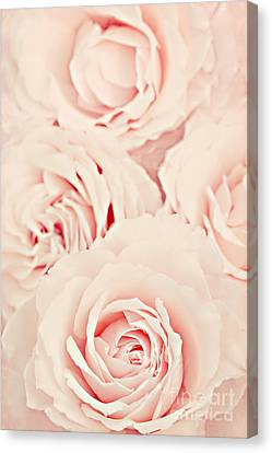 Roses Canvas Print by Diana Kraleva