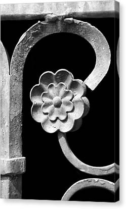 Rosette - Wrought Iron  Canvas Print by Nikolyn McDonald