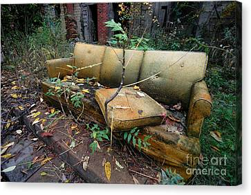 Rotting Yellow Sofa Canvas Print by Amy Cicconi