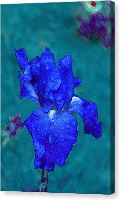 Royal Blue Iris Canvas Print by Viktor Savchenko